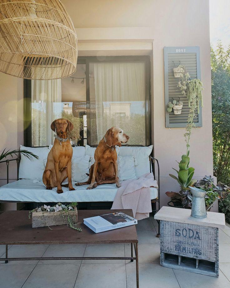 Un cajón vintage de soda y un mini makeover / Vero Palazzo - Home Deco Love My Dog, Ideas Para, Oversized Mirror, Outdoor Living, Gallery Wall, Mini, Palazzo, Soda, Furniture