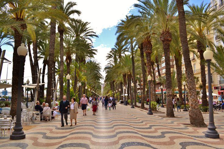 Een bezoek brengen aan de stad Alicante? Via Viajes Van Ham boekt u zo een excursie.