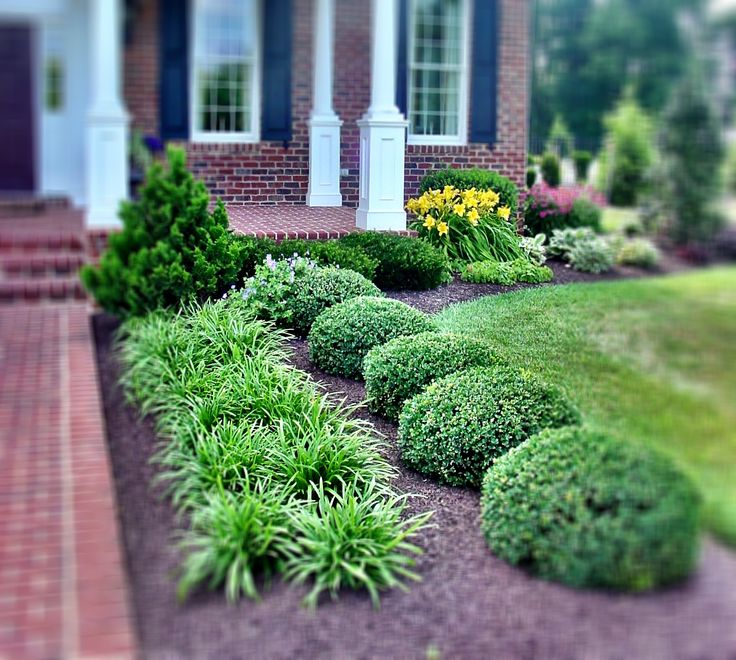 Mulch ideas: Use of symmetrical planting with gorgeous mulch.