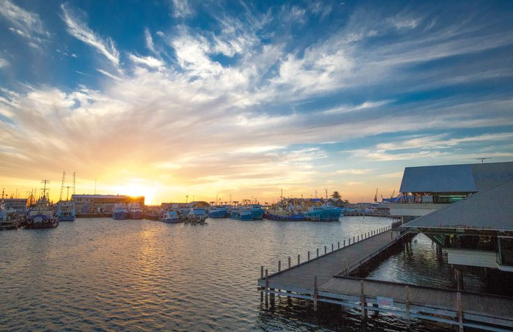 The Fishing Boat Harbour in Fremantle is WA's largest working port and is home to over 400 fishing boats. The harbour was built in 1919 when a 300 metre breakwater was constructed to provide an anchorage for fishing vessels.