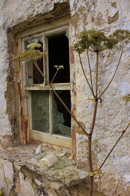 Abandoned Abandoned Haunted Windows Doors Abandoned