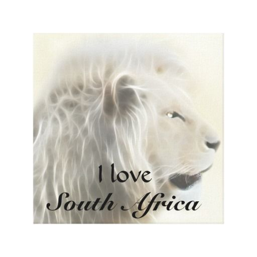 I love South Africa canvas - the white lion is a really exquisite creature.