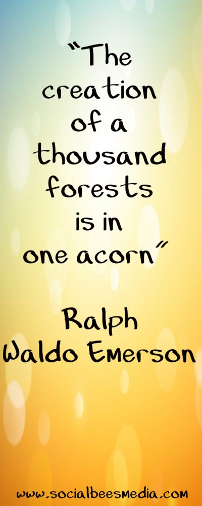 """The creation of a thousand forests is in one acorn"" Ralph Walo Emerson"