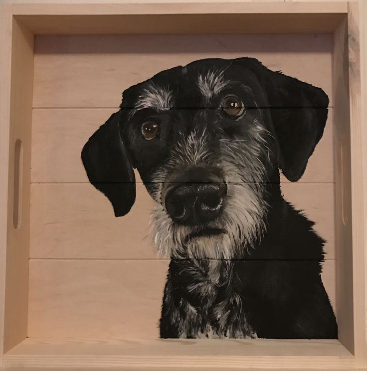 Dog painted on a wooden tray, nice decoration