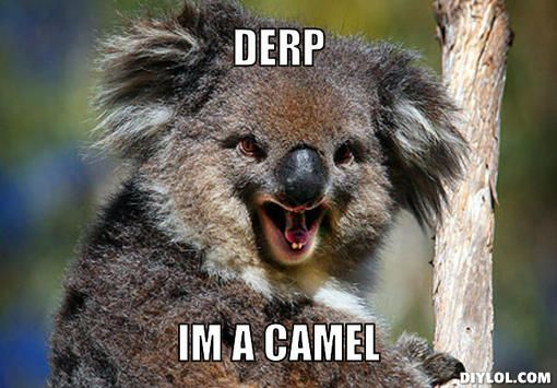 koala memes - Google Search   Funny stuff   Pinterest ...