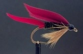 Fly Tying Forum: Great patterns and directions - beautiful fly!
