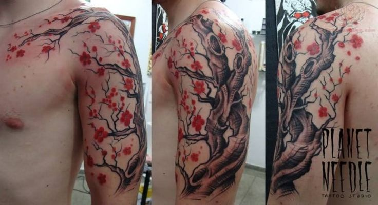 Tatouage arbre en fleur bras complet homme yh5e4 sa pinterest tatoo and tattoo - Tatouage bras complet homme ...