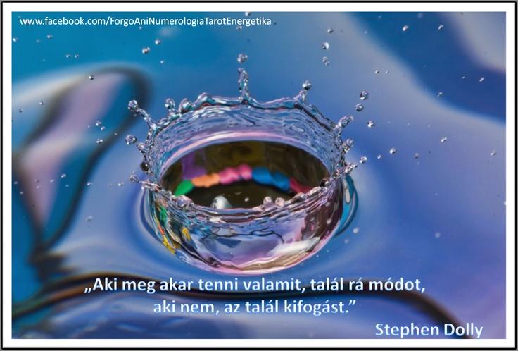 http://www.facebook.com/ForgoAniNumerologiaTarotEnergetika#