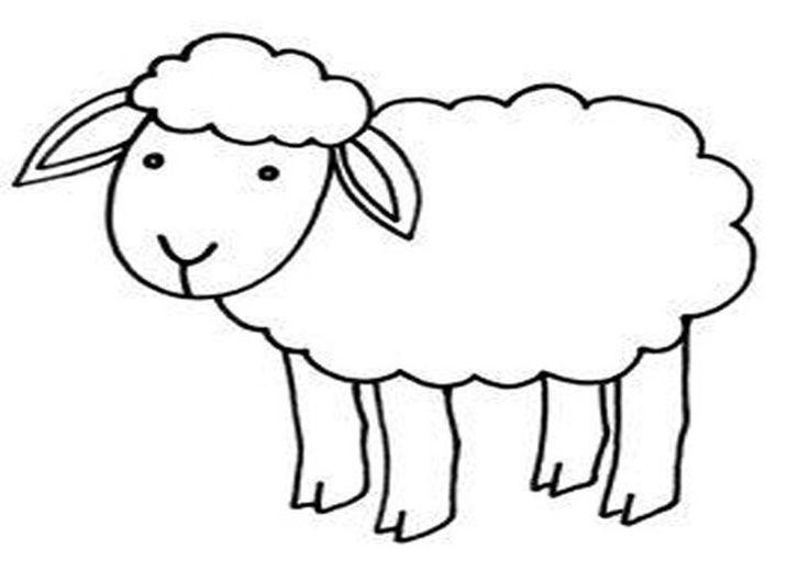 Schaf Ausmalbilder tiere 27 Sheep crafts Bible school