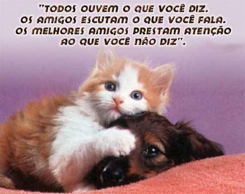 n_flamengo_piadas_e_humor-6057313.jpeg (495×393)
