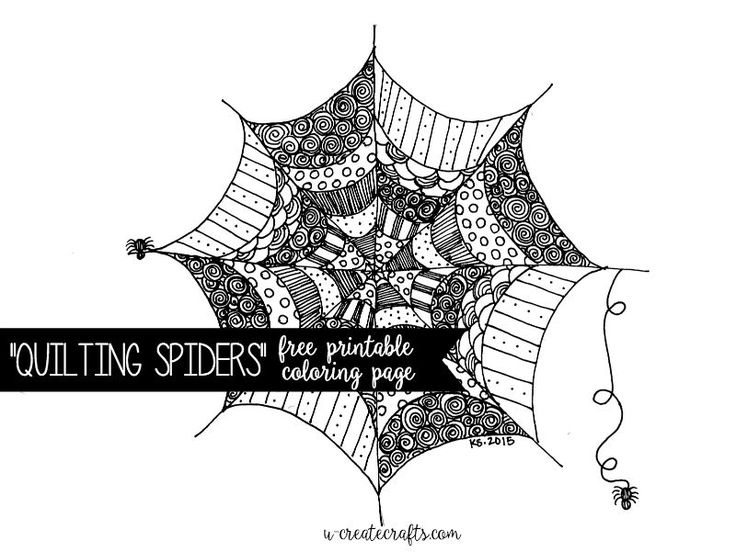find this pin and more on bug board quilting spiders coloring page