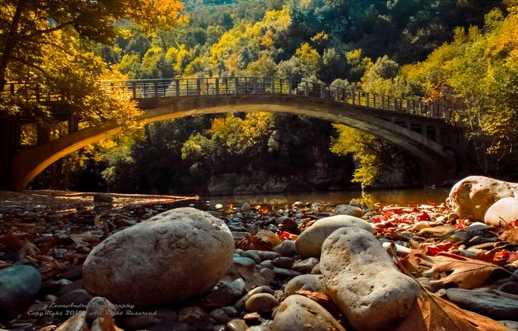 GREECE CHANNEL| Autumn time near Old bridge in #Zagorohoria. Photo by Andreas Economou, flickr http://www.greece-channel.com/