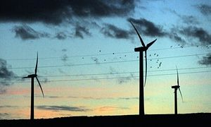 TTIP: what does the transatlantic trade deal mean for renewable energy?