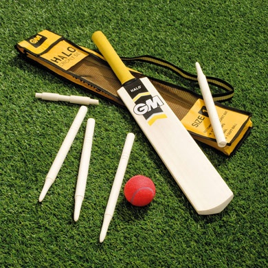 Play a spot of cricket at a St George's party