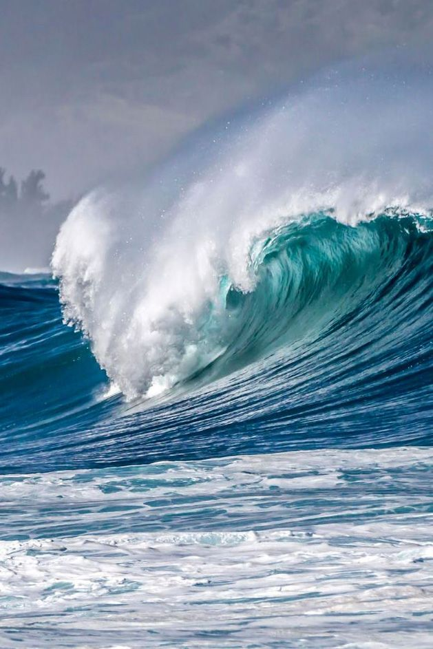 The surf forecast was calling for at least 20 foot waves. It does't usually break this big in this location. Oahu