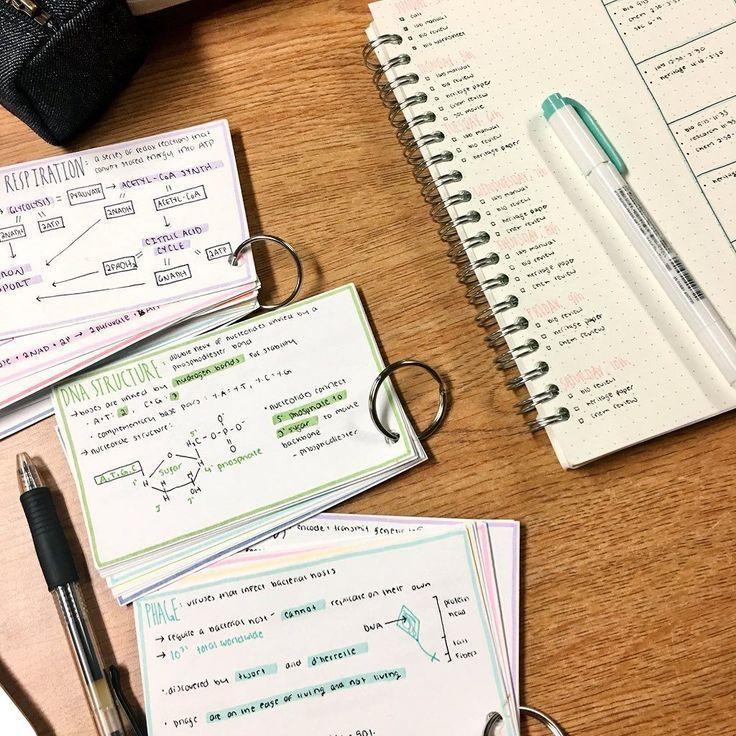 Emma's Studyblr {Hilfe im Studium