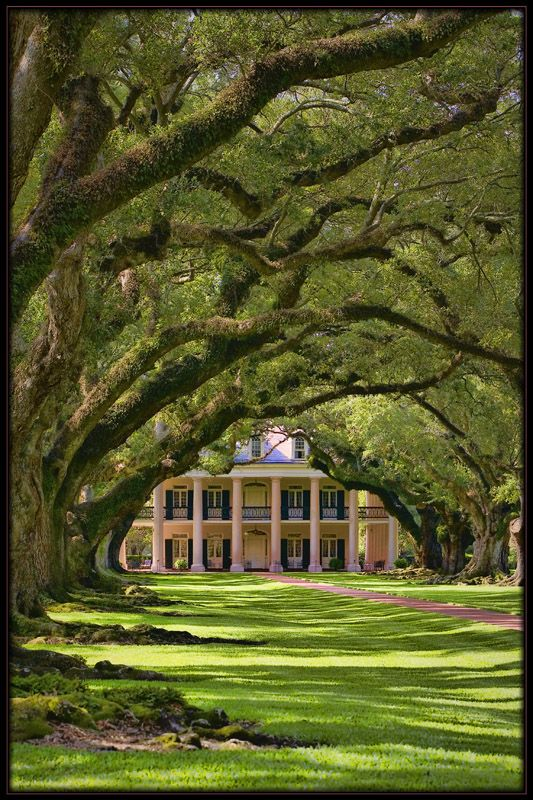 Oak Alley Plantation, west of New Orleans.  Built in 1837.