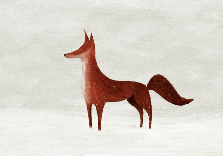 offbeat_estudio_fox