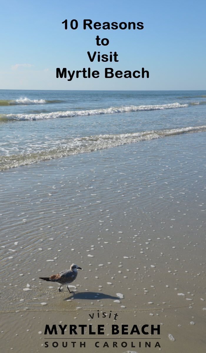 Top Reasons To Visit Myrtle Beach Sc Pinterest South Carolina And