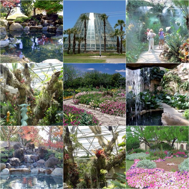 The San Antonio Botanical Garden Is A 33 Acre Non Profit Botanical Garden In San Antonio Texas