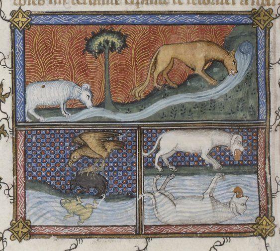 1286 best bestiariusz images on pinterest illuminated for Miroir des princes