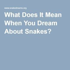 What Does It Mean When You Dream About Snakes?