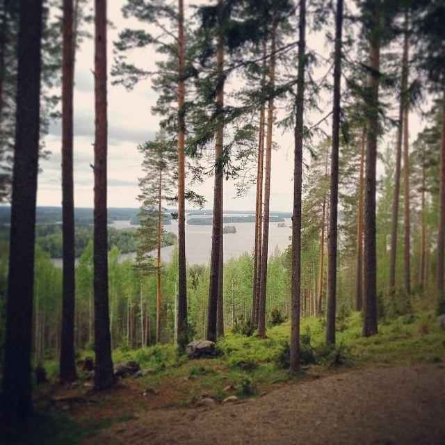 #Julkulanmäki #Kuopio