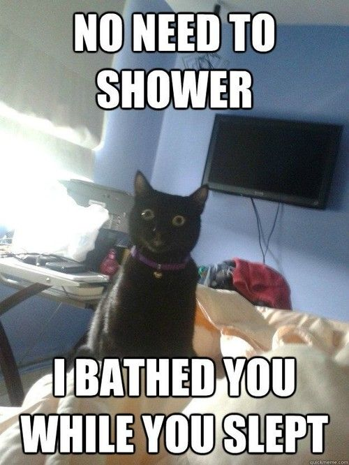 no need to shower, i bathed you while you slept.