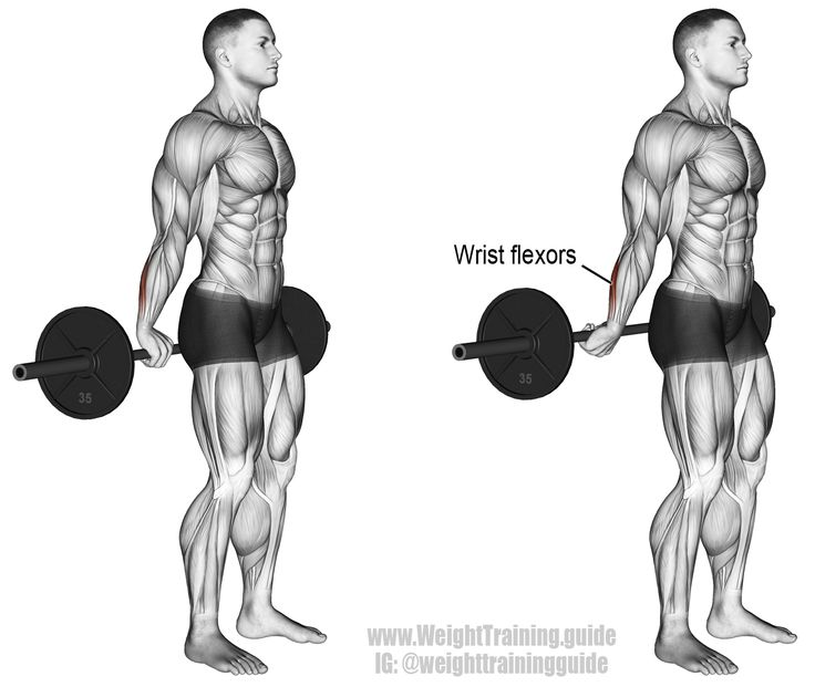 Behind The Back Barbell Wrist Curl Instructions And Video