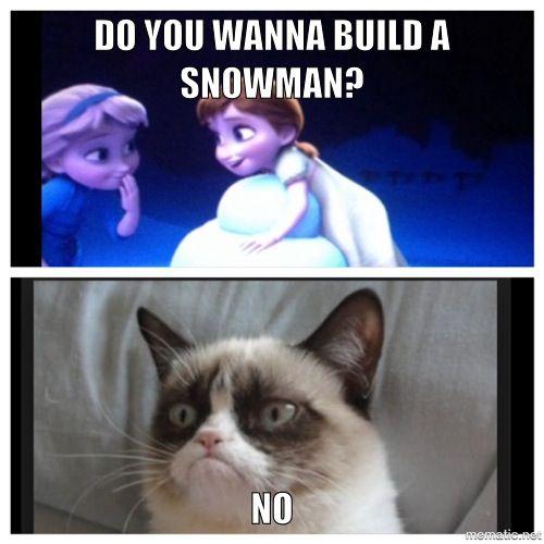 Do you wanna build a snowman? No   I ♥ Grumpy Cat ...