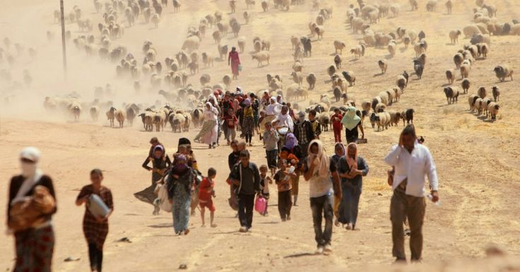 MASS MIGRATIONS Article by COMMON DREAMS http://www.commondreams.org/views/2015/08/28/call-it-what-it-global-migration-shift-climate-not-migrant-or-refugee-crisis