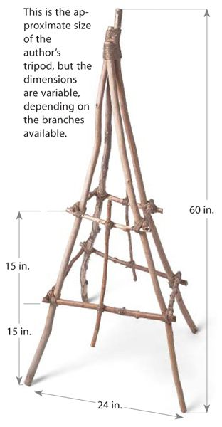 how to build a rustic branch & twig tuteur