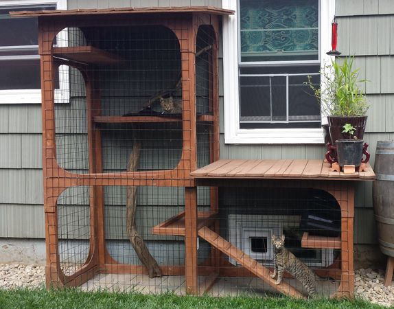 Different cat patio styles, shapes on Catio Tour: 'Cats aren't too picky, they just like being outside' (photo gallery) | OregonLive.com