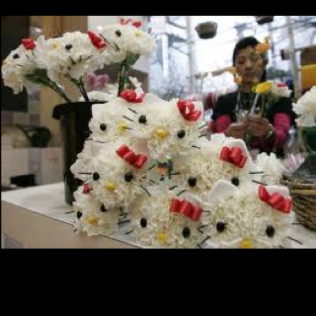 more hello kitty carnations/ mums