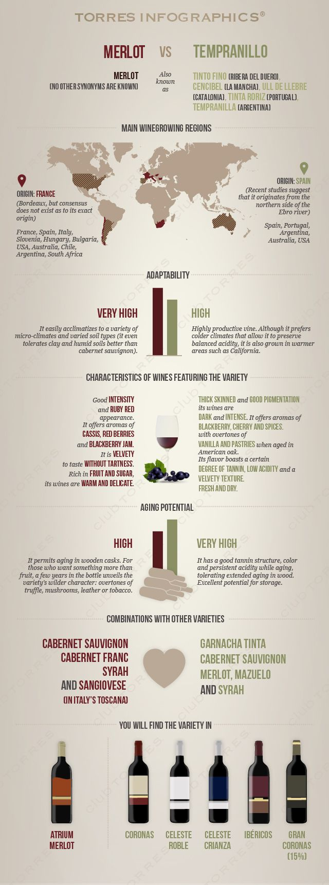 #Infography: Merlot Vs Tempranillo. #Wine