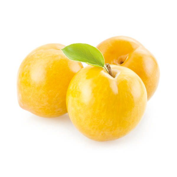 Śliwa - Prunus domestica 'Shiro'