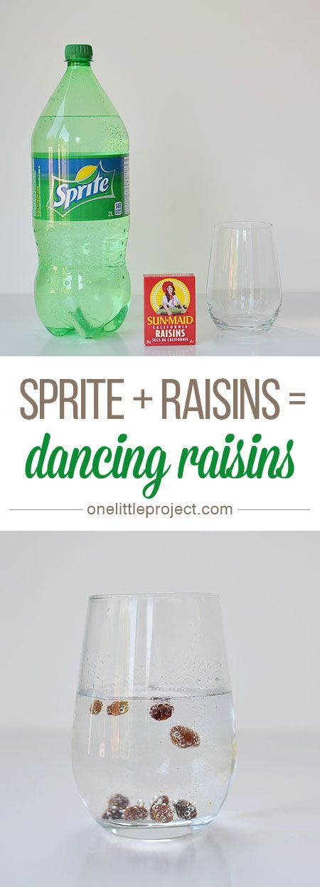 This dancing raisins experiment is SO EASY and it really works! There's a great video of it here. The raisins instantly start rising to the top and dancing up and down!