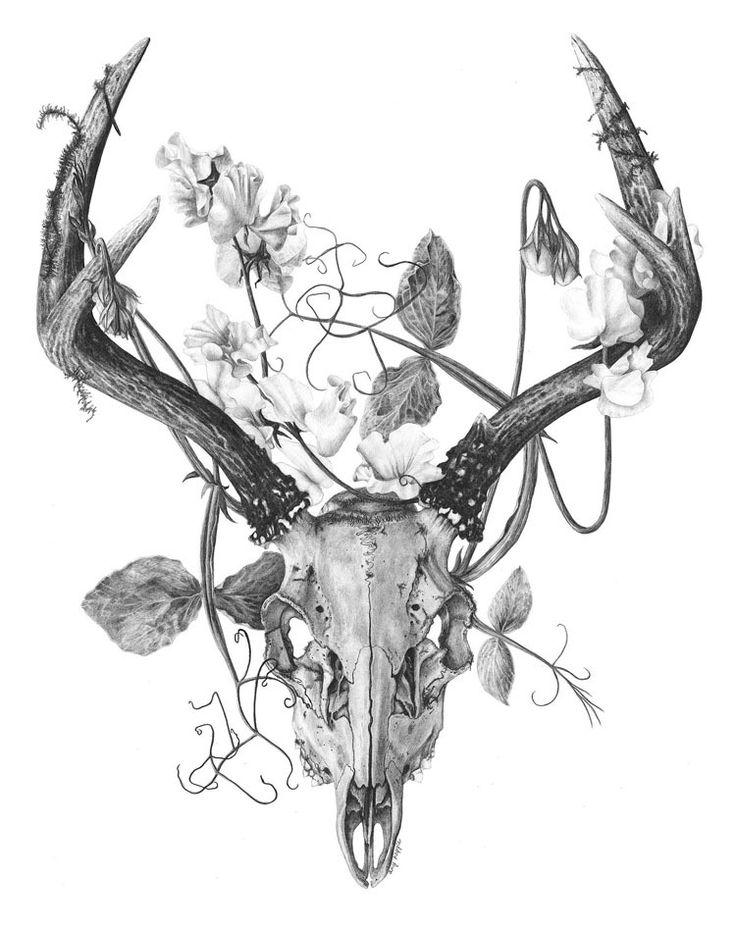 deer skull with flowers - Pesquisa Google