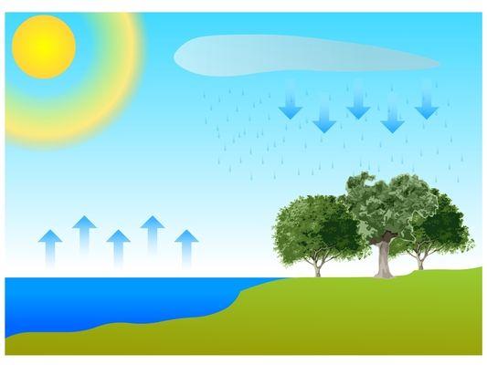 A víz körforgásának fázisait bemutató magyarázó ábra