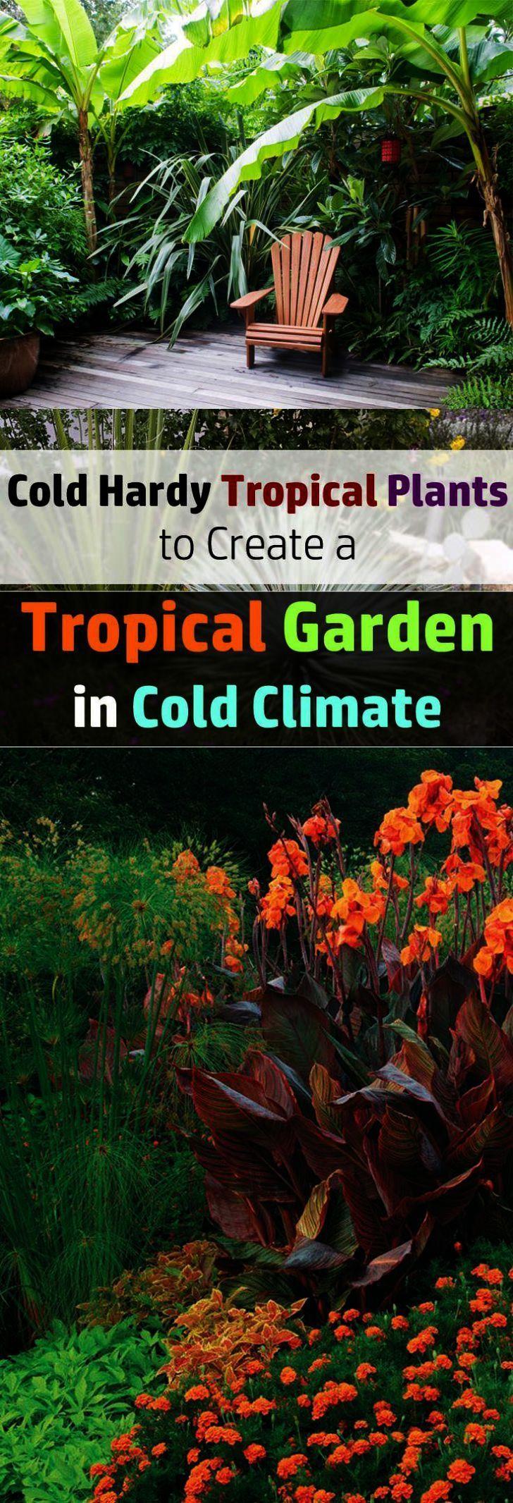 Garden Landscape Design Cheltenham over Garden Landscape ...