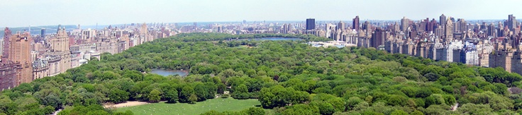 Central Park from atop the Essex House, Park avenue. We used to eat at Mickey Mantels a couple doors down. I've walked the park for hours... Shakespeare's Garden is amazing!