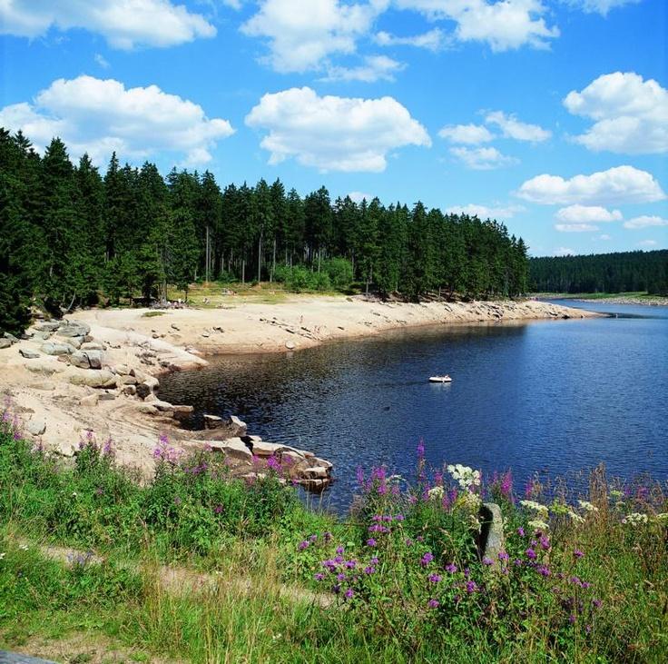 Oderteich bei St. Andreasberg   Quelle: Harzer Tourismusverband (c)