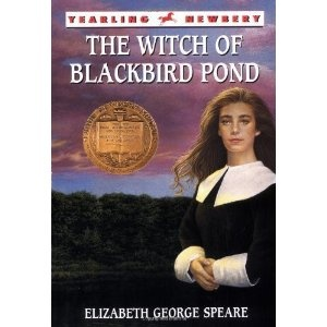 Essay question for the witch of blackbird pond