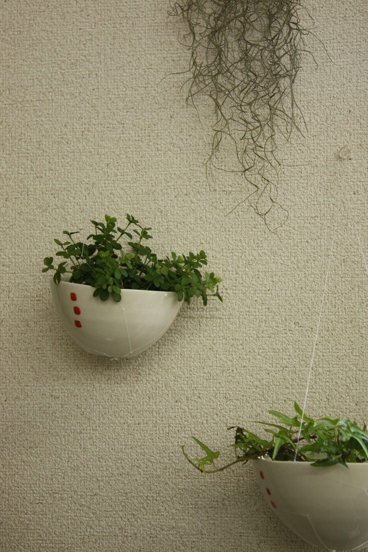 Invisible plant hangers