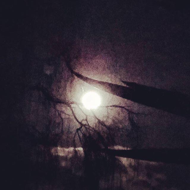 Full moon 31st Jan 2018 #lunareclipse happening tonight.. #deckyard