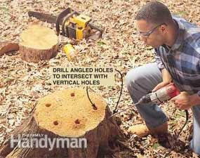 http://www.familyhandyman.com/landscaping/how-to-remove-a-tree-stump-painlessly/view-all