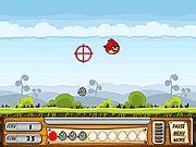 Jeux en ligne gratuit - chasse Angry Birds