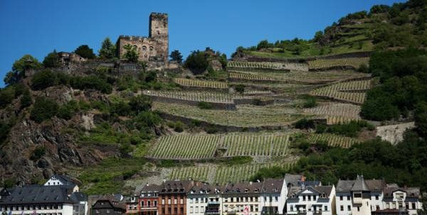 answers to your questions about RELAX Riesling and German wine country