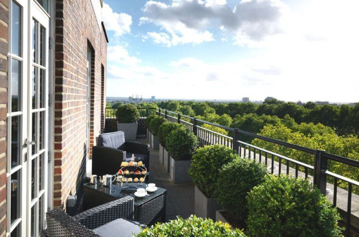 Granite planters with Buxus topiary on 8th floor terrace | privacy container planting