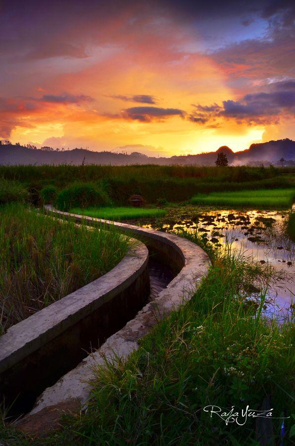 Sunset Field by raja yuza on 500px